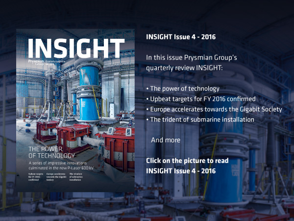 insight-4-16-feature-link
